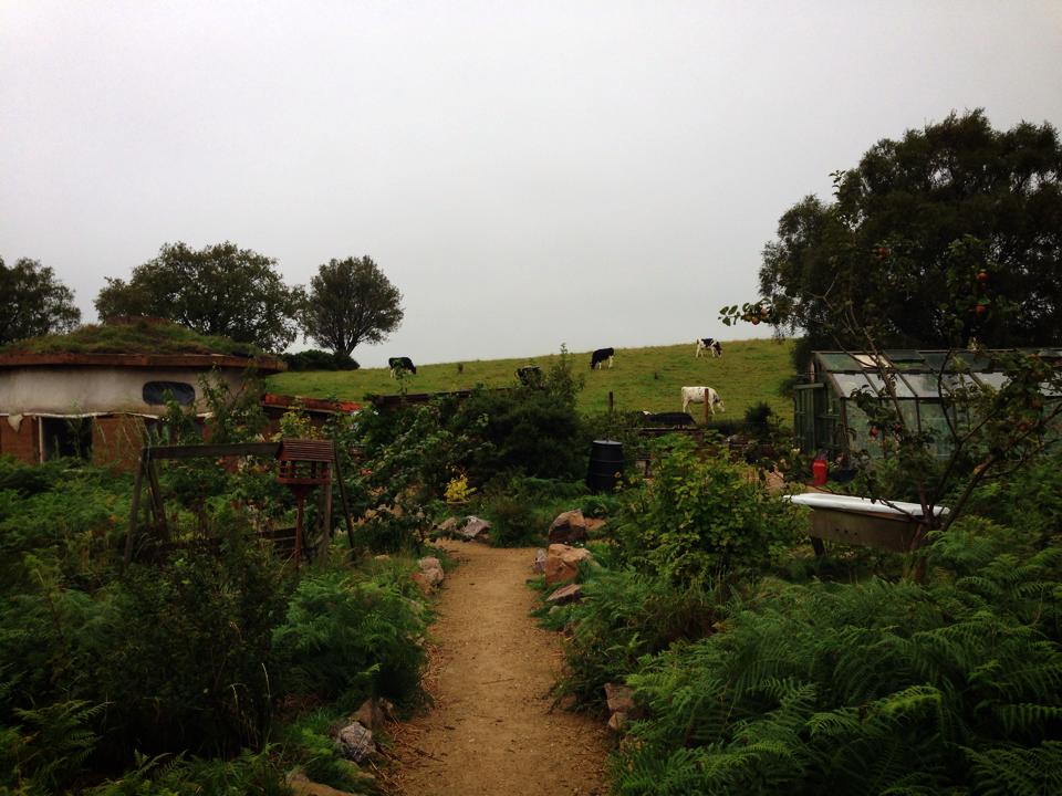 The farm I worked on as a WWOOF volunteer