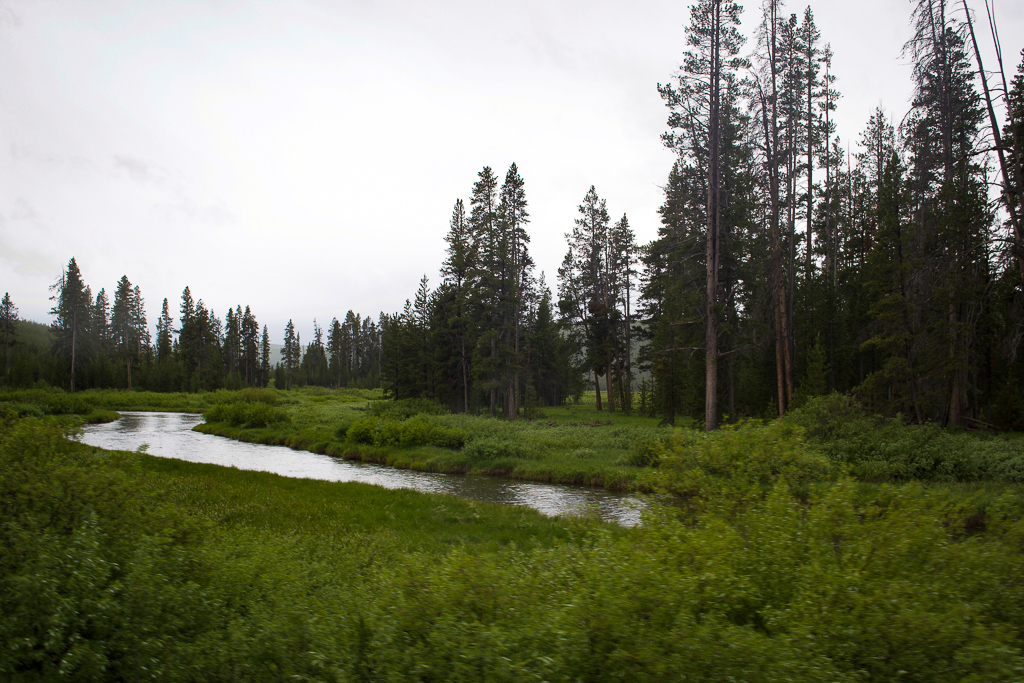 Yellowstone's Indian Creek