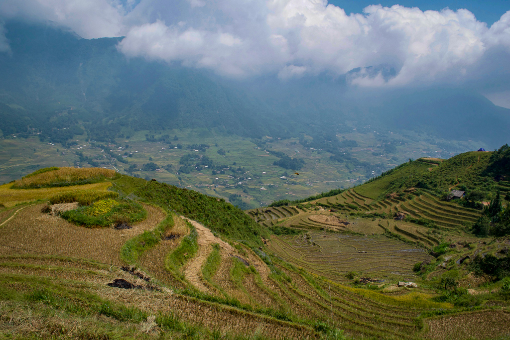 Rice paddies in Ta Van Village, Sapa, from Hoang Kim Homestay