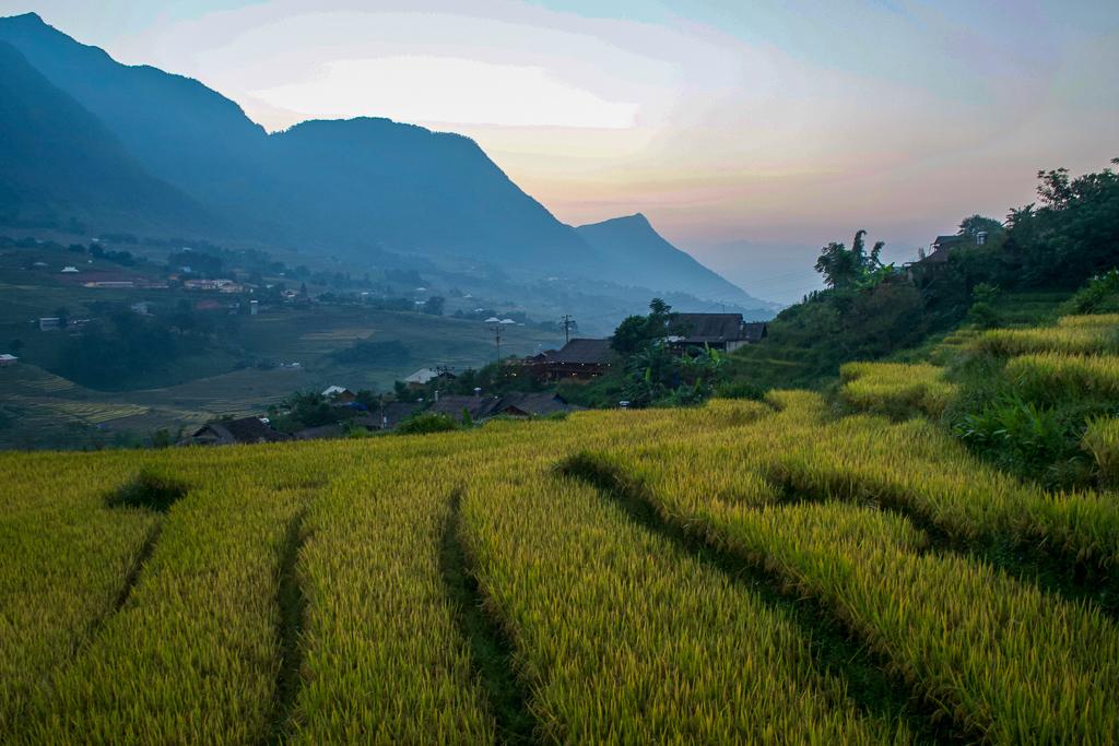 Hoang Kim Homestay view of Ta Van Village
