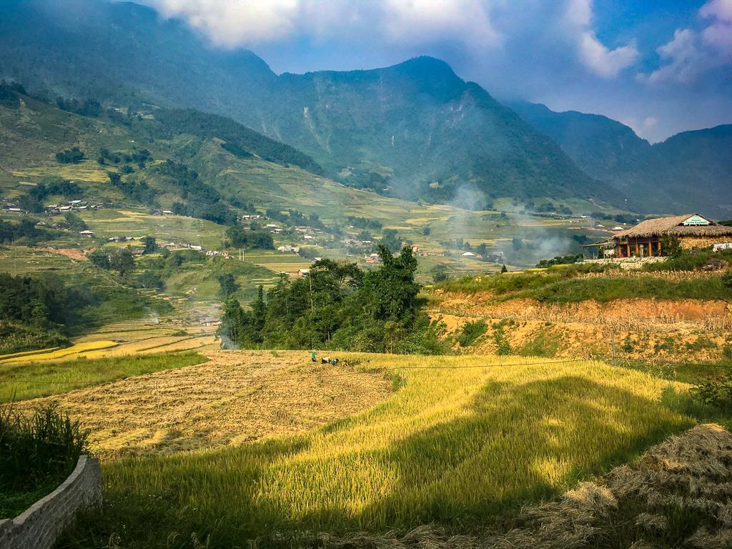3 Week Vietnam Itinerary - Rice paddies around Sa Pa