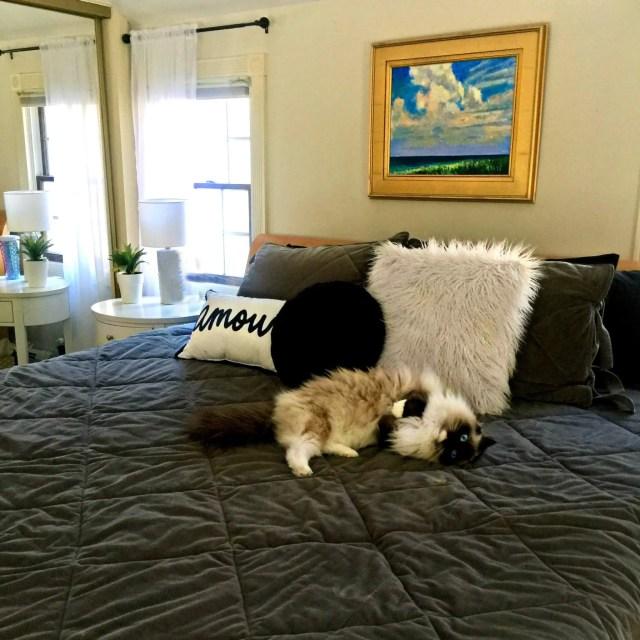 How to Create a Cozy, Chic Bedroom   GlamKaren.com