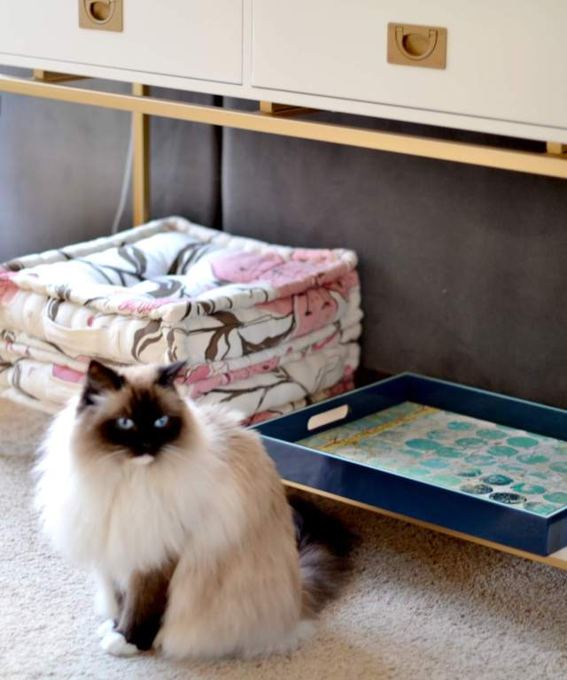 1st Steps: How to Refresh your Living Room
