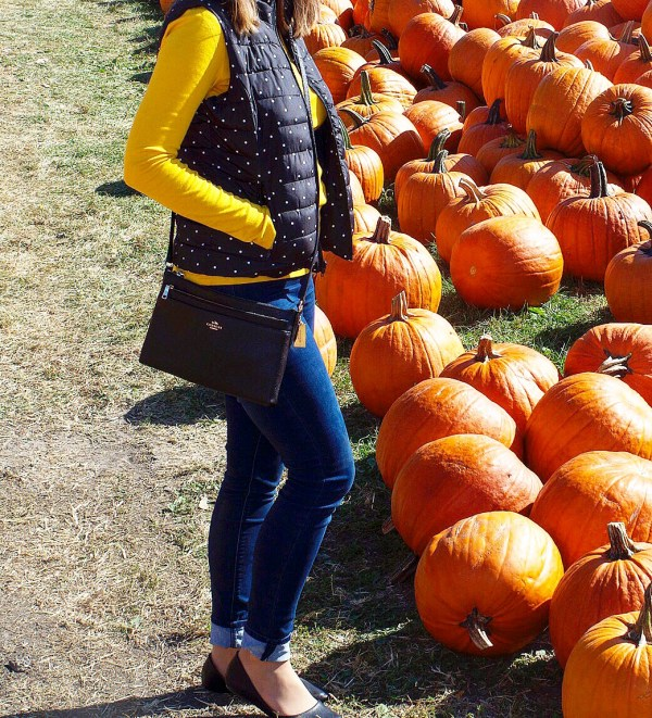 Yellow and Polka Dots - Pumpkin picking fall outfit