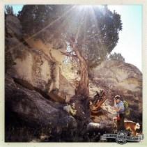 Hiking trails behind Ruby Mnt CG, Arkansas Rec. Area.