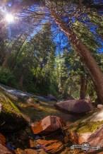 Hidden gem, Castle Creek River.