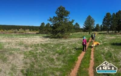 Colorado Campground, CO. Spring 2016