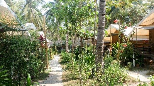 coconut-grove-by-david-doyon