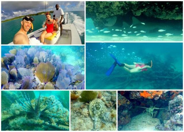 08 Snorkeling North Eleuthera-HoneyTrek.com