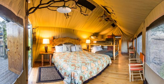 Safari-West-Tent-24-interior-by-Ray-Mabry