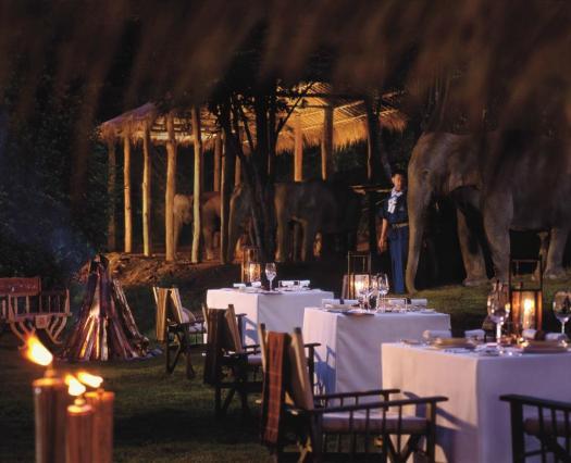 elephant_camp_dinner-four-seasons-tented-camp