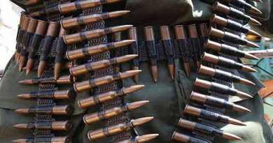 Gunmen Attack Niger Communities