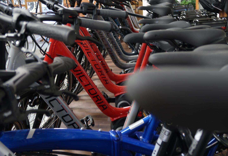 Was ist beim Kauf eines E-Bikes zu beachten? Meine persönlichen Erfahrungen mit den Pedelecs von Victoria.