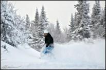 Powder day. (Massif du Sud, Québec, janvier 2009)