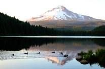 Trillium Lake et le Mont Hood (Oregon).