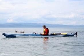20150810_kayak_popo_kamou-20