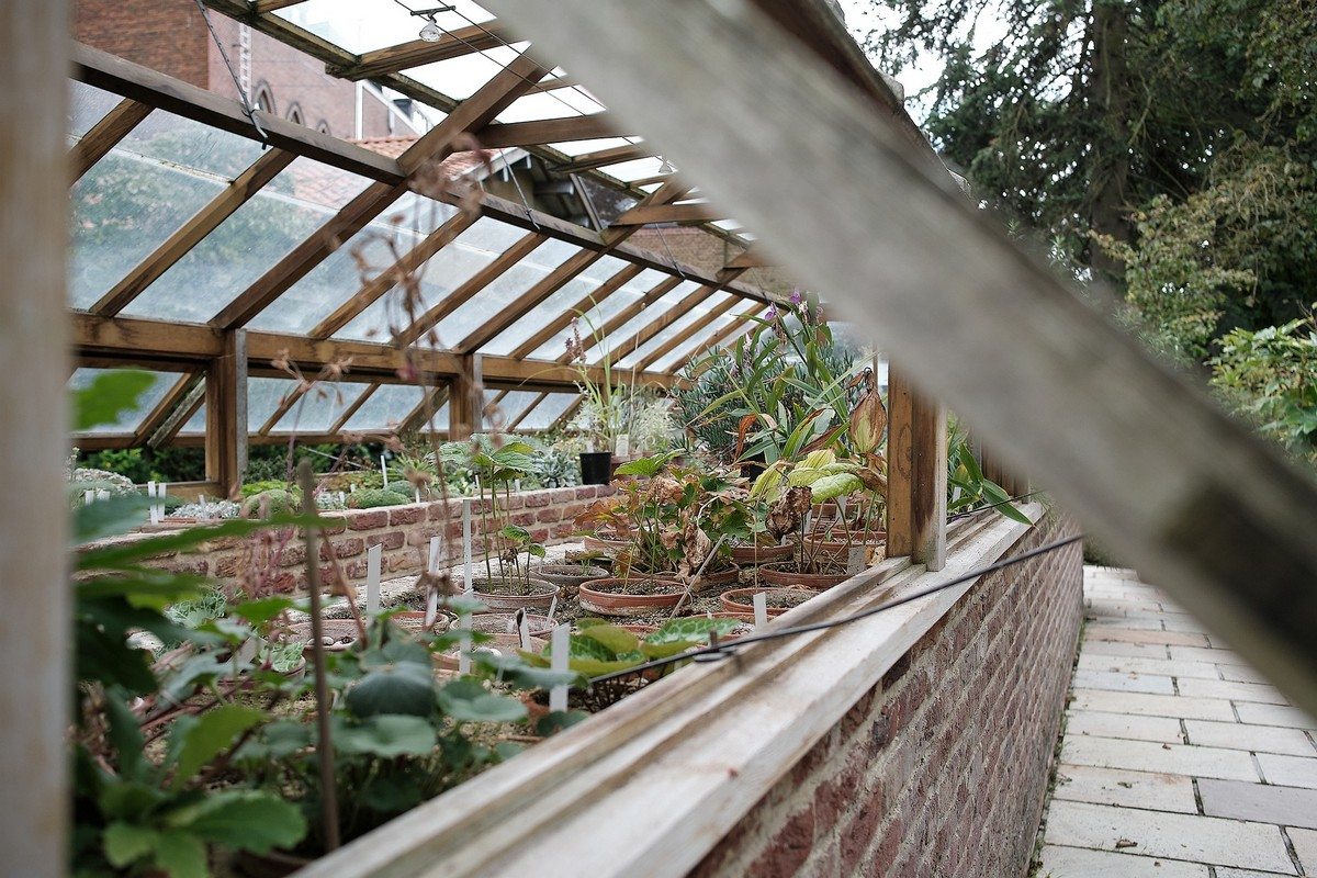 Benefits of buying a greenhouse guide