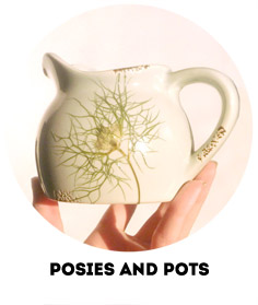 posies-and-pots