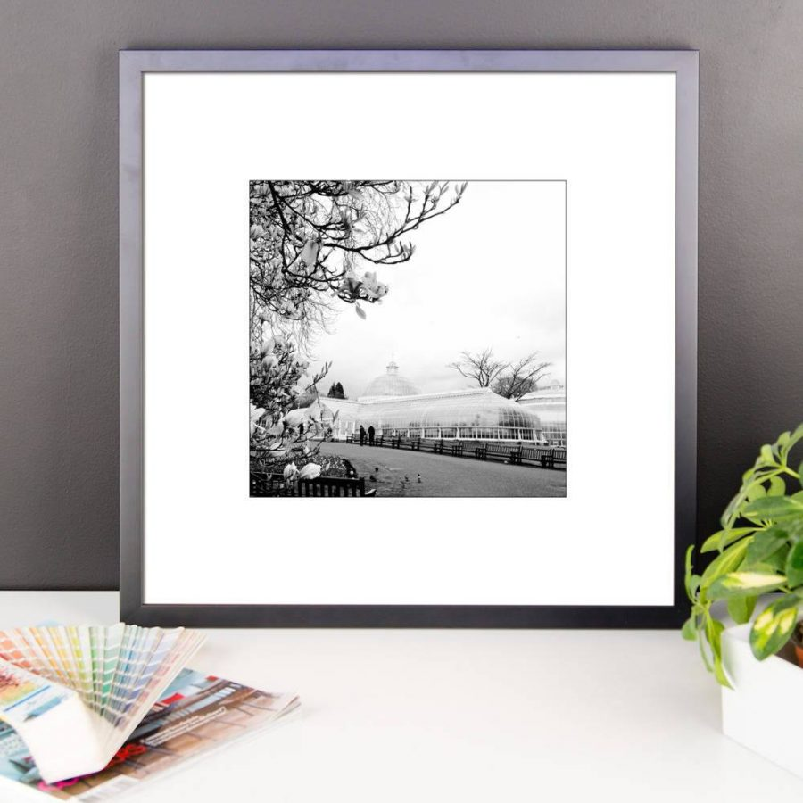 Framed Print: Kibble Palace in the spring
