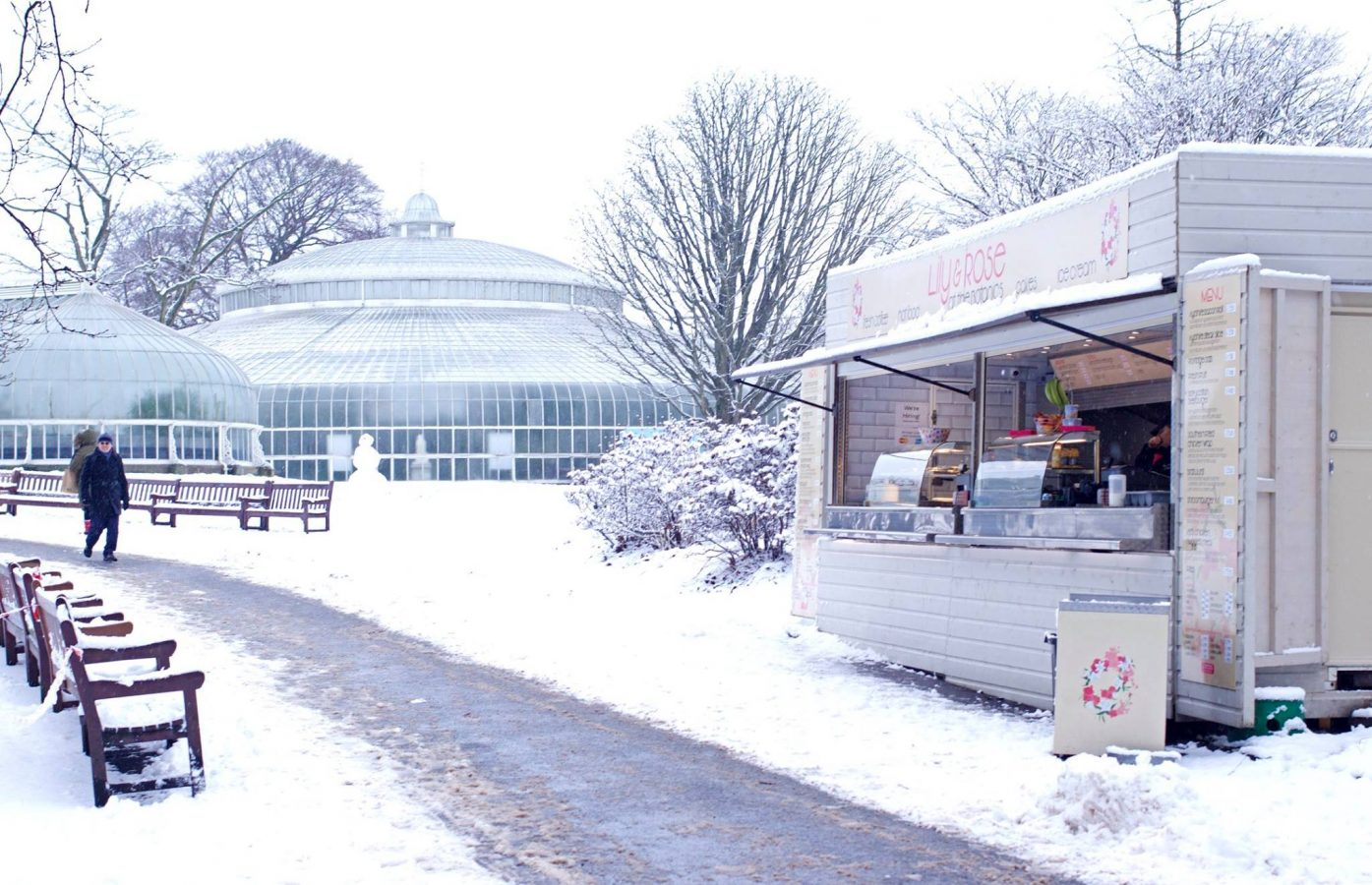Botanic Gardens in the snow