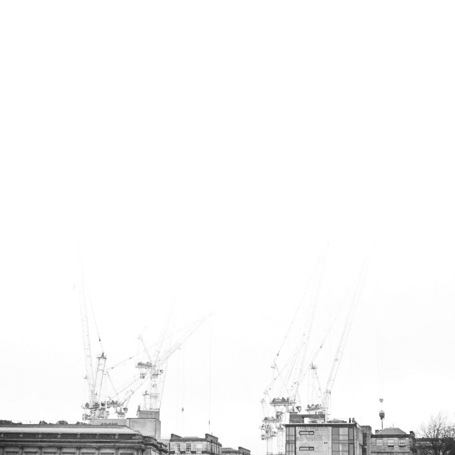Cranes in the mist.