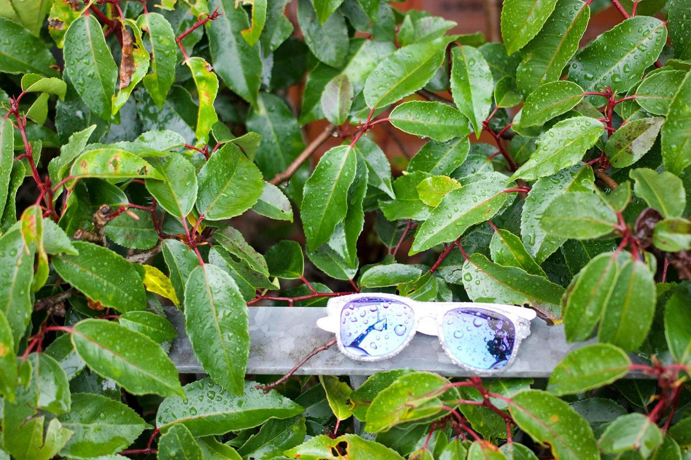 Lost sunglasses in the rain