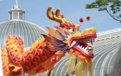 Festival parade dragon