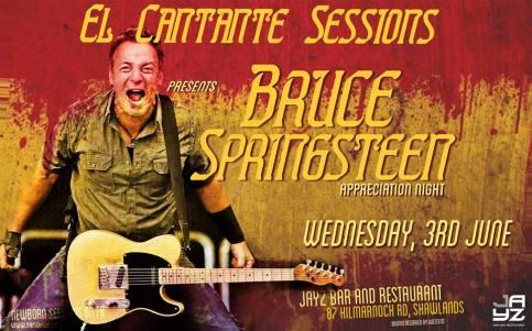 bruce springsteen app night