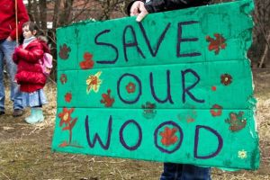 save-our-wood