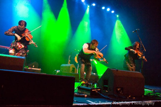 colour three fiddlers