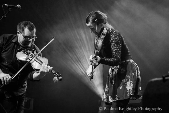 two fiddlers