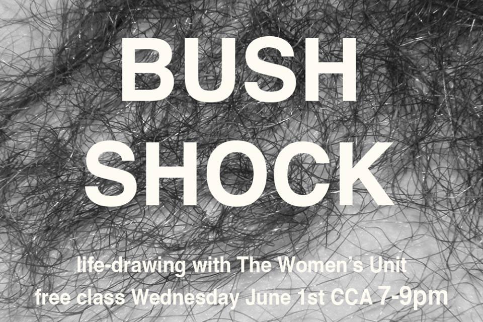 bush shock