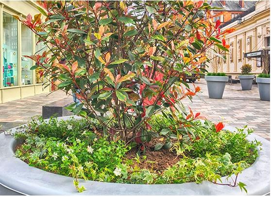 vinicombe planters