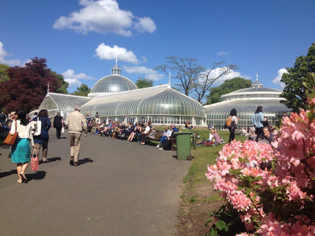 kibble botanics