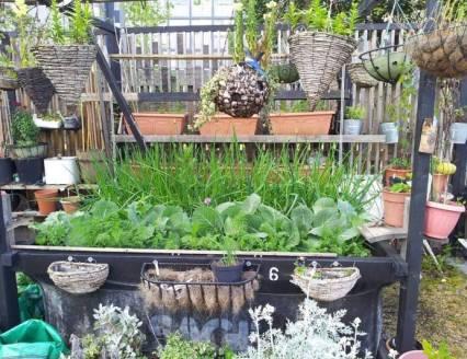 greyfriars-garden do