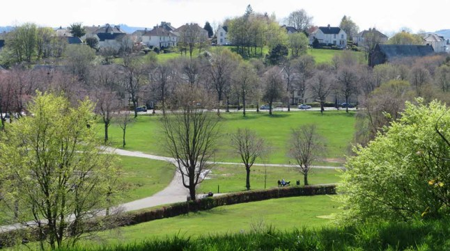 Bellahouston Park View