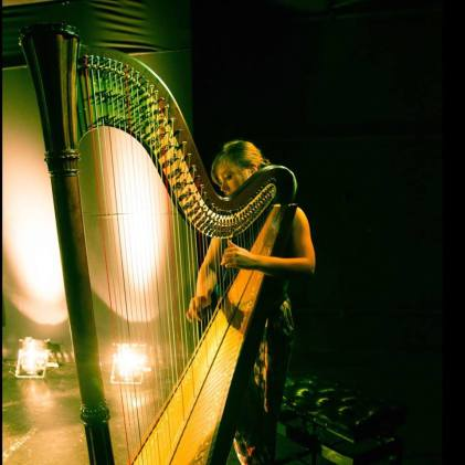 sophie rocks harpist