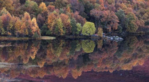 Loch Ruthven Reflections. Inverness. Highlands