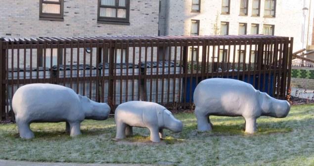 Hippo Family. Anderston. Glasgow