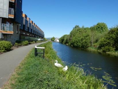 Canal at Maryhill