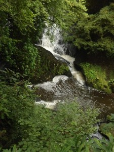 rouken glen waterfall