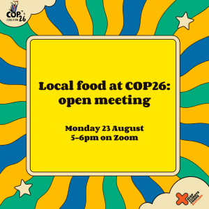 Food-at-COP-meeting-Insta