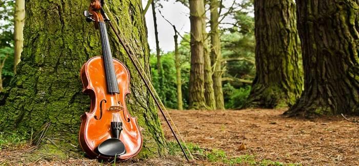 """Peter Stam: """"Muziek van een hoog aaibaarheidsgehalte."""""""