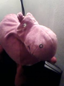 The Pink Hippo of inspiration