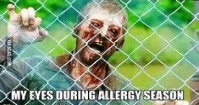 Seasonal Allergies how they attack your eyes