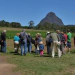 Event: Open Days at Sandy Creek Organic Farm on Saturday,12 October 2013