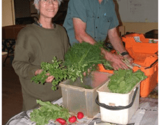 Sandy Creek Organic Farm Newsletters