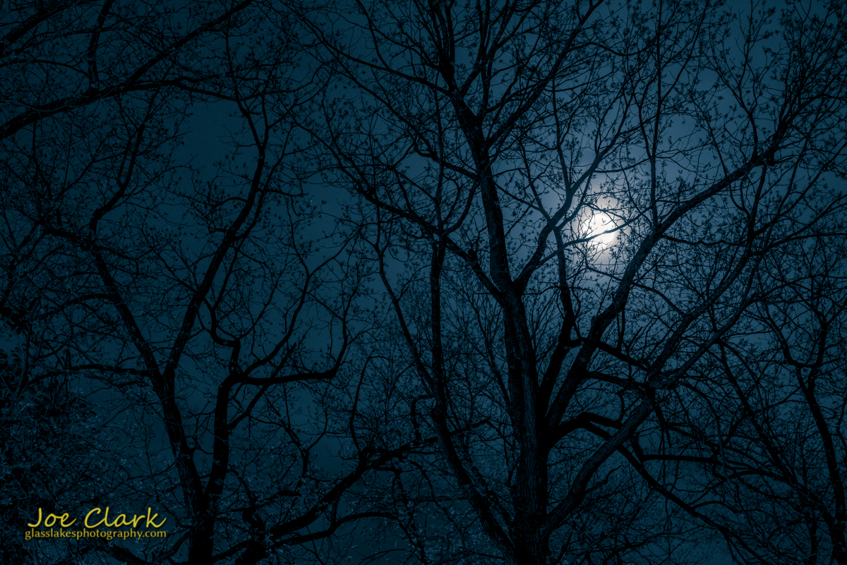 Downtown Petoskey park night scenery photographer Joe Clark moon