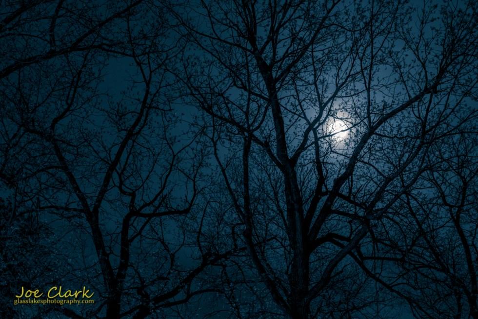 Downtown Petoskey park night scenery photographer Joe Clark moon