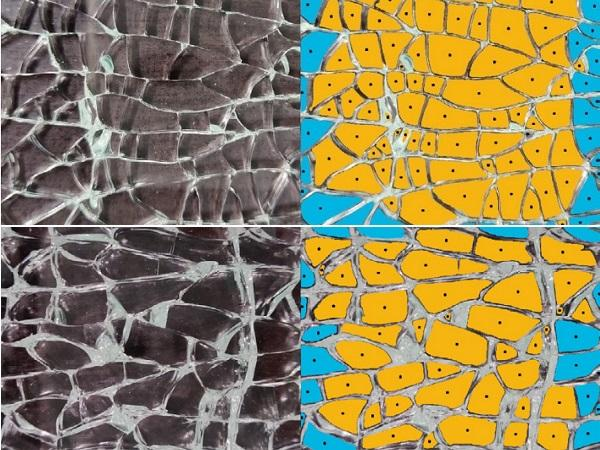 Tempered Glass Fragmentation Test